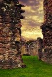 Abbey Ruins Fotografía de archivo libre de regalías