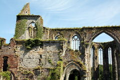 Abbey ruins Royalty Free Stock Photos
