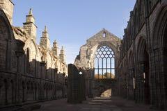 Abbey Ruins di pietra Immagine Stock Libera da Diritti