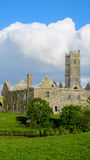 Abbey Ruins Royalty Free Stock Photography