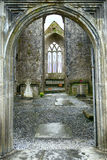 Abbey ruins, Quin, Ireland Stock Photography