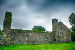Abbey ruins, Quin, Ireland Royalty Free Stock Photography