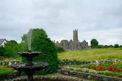 Abbey ruins, Quin, Ireland Stock Image