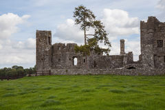 Abbey ruins. Stock Images