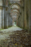 Abbey of San Galgano, detail Royalty Free Stock Photo