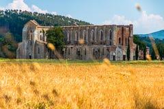 Abbey San Galgano royalty free stock images