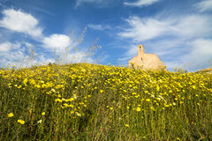 Abbey of San Mauro in Salento- Italy. Abbey of San Mauro in Salento with a large lawn flowers- Italy Royalty Free Stock Image