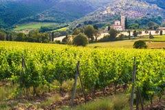 Abbey Sant ' Antimo mellan vingårdarna i Tuscany, Italien Royaltyfria Bilder