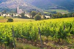 Abbey Sant ' Antimo mellan vingårdarna i Tuscany, Italien Arkivbild