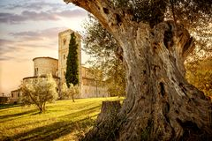 Abbey of Sant`Antimo in Montalcino, Tuscany, Italy. The abbey of Sant`Antimo is a monastic complex in Olivetano located near Castelnuovo dell`Abate, within the Royalty Free Stock Photography