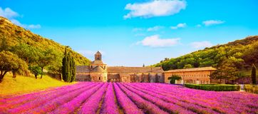 Abbey of Senanque blooming lavender flowers panoramic view. Gord. Abbey of Senanque and blooming rows lavender flowers panoramic view at sunset. Gordes, Luberon Royalty Free Stock Image
