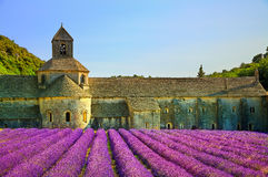 Abbey of Senanque blooming lavender flowers on sunset. Gordes, L Royalty Free Stock Image