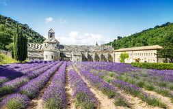 Abbey of Senanque Royalty Free Stock Image