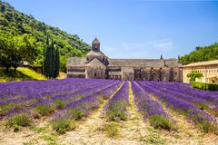 Abbey of Senanque and blooming rows lavender flowers. Gordes, Luberon, Vaucluse, Provence, France. stock photos