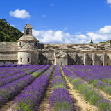 Abbey of Senanque and lavender Royalty Free Stock Photography