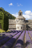 Abbey of Senanque and lavender field Stock Photography