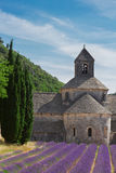 Abbey Senanque and Lavender field, France Stock Image