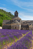 Abbey Senanque and Lavender field, France Royalty Free Stock Photos