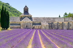 Abbey of Senanque and lavender. Provence, Franc Stock Photos