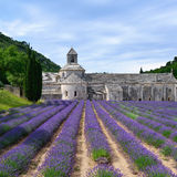 Abbey of Senanque Royalty Free Stock Photo