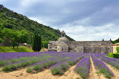 Abbey of Senanque Royalty Free Stock Photography