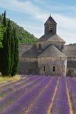 Abbey Senanque och lavendelfält, Frankrike Royaltyfria Foton