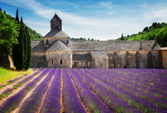 Abbey Senanque och lavendelfält, Frankrike Arkivbilder