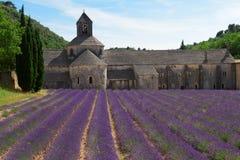 Abbey Senanque och lavendelfält, Frankrike Arkivfoton