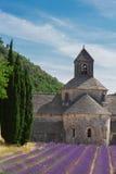 Abbey Senanque och lavendelfält, Frankrike Fotografering för Bildbyråer