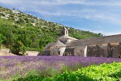 Abbey Senanque och lavendelfält, Frankrike Royaltyfri Bild