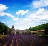 Abbey Senanque och lavendelfält, Frankrike Royaltyfria Bilder