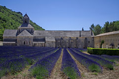 Abbey of Senanque,Provence,France. A view of ancient abbey with a field of lavender Stock Image