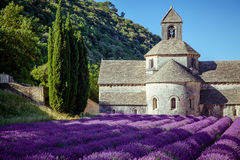 Abbey Senanque Provence France Royaltyfria Foton