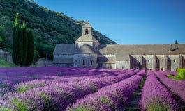 Abbey Senanque Provence France Royaltyfri Fotografi