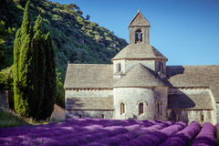 Abbey Senanque Provence France Stockbilder