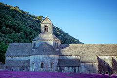 Abbey Senanque Provence France Royaltyfria Bilder