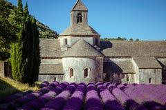 Abbey Senanque Provence France Fotografering för Bildbyråer