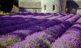 Abbey Senanque Provence France Arkivfoto