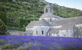 Abbey Senanque Provence France Stockfotos