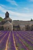 Abbey Senanque- und Lavendelfeld, Frankreich Stockfotografie
