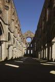 abbeygalgano san Royaltyfria Foton