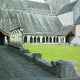 abbeyholycross Royaltyfri Foto