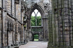 abbeyholyrood Arkivbilder