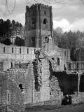 abbeyspringbrunnar Arkivfoton
