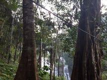 Abbi-Wasserfall Lizenzfreie Stockfotografie