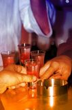Abbiamo una bevanda! Immagine Stock