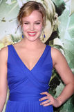 Abbie Cornish Abby Cornish Royaltyfria Foton