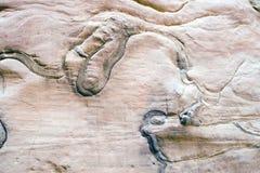 Abbildung auf Felsen Stockbild