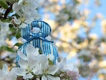 Abbildung 8 auf Hintergrund von Kirschblüten Lizenzfreie Stockbilder