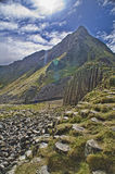 Abbildung der Dammes des Riesen in Nordirland. Lizenzfreie Stockfotos